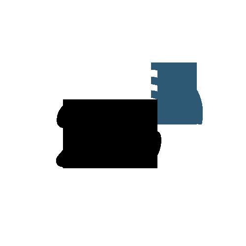 Conectividad-2g
